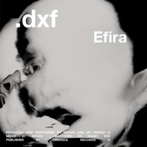 .dxf neues Projekt aus Frankreich