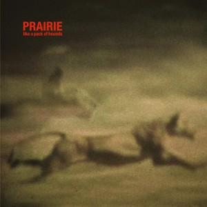 Musik-Kunst Projekt Prairie aus Brüssel; Credit: Shitkatapult