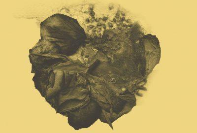 Lunar aus Dänemark - Artwork: Daniela Bretes Maciel Elneff