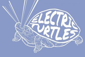 Electric Turtles aus Leipzig
